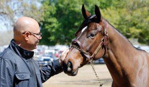 Billionaire Australian Racehorse Investor Breaks Ties After Frozen Prize Money Amid Crypto Scam