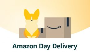 Will Amazon accept DOGE payments?