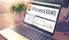 """Former Chief Monero Maintainer """"Fluffypony"""" Arrested"""