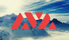 AVAX  Skyrockets Amid $230 Million Investment