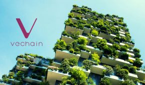 Real Estate Giant Inks Deal With VeChain in Blockchain Sustainability Push