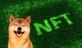 Demand for Fractionalised NFTs Grows as Doge Meme Valuation Exceeds $300 Million