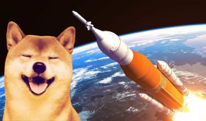 Shiba Inu Coin Surges 500% Amid Shiboshi's NFTs Launch and Exchange Listings