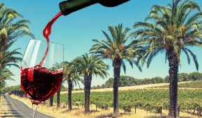 Barossa Winemaker Launches Entire Vintage as Drinkable NFTs